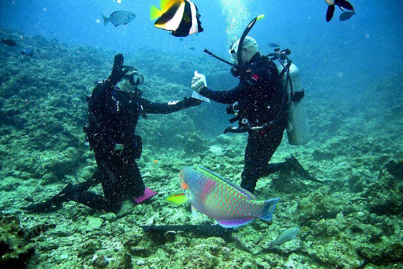 Pojištění potápěčů